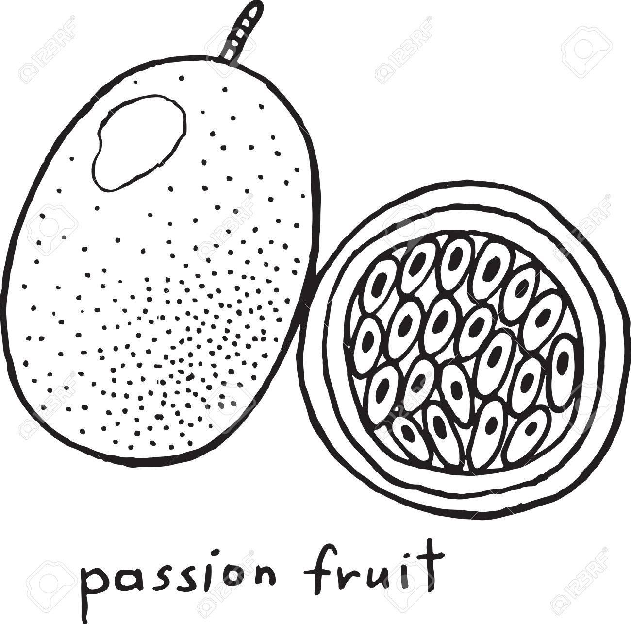 Passionsfrucht Färbung Seite. Graphic Vector Schwarz-Weiß-Kunst Zum ...