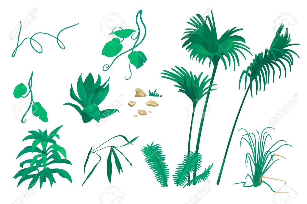 Naturaleza Concepto De Paisaje: Elementos Botánicos Aislados Sobre ...