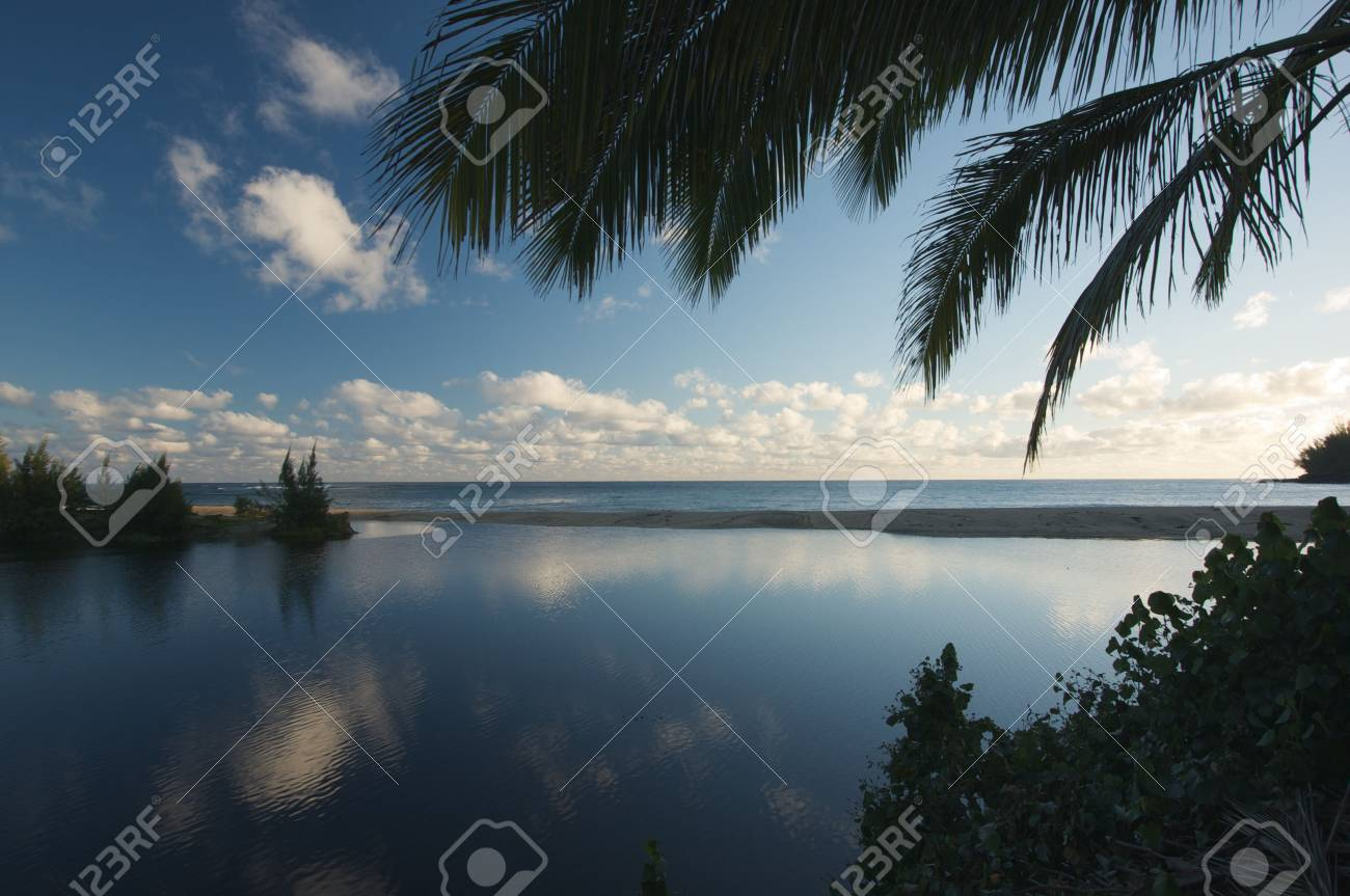 Tropical Sunset with Palm Trees and clouds. Stock Photo - 3714322