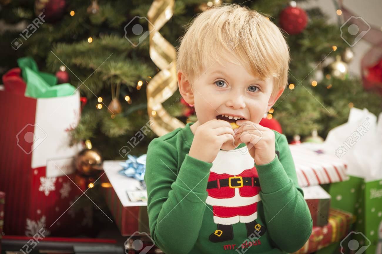 Cute Young Boy Enjoying Christmas Morning Near The Tree. Stock Photo - 16829993