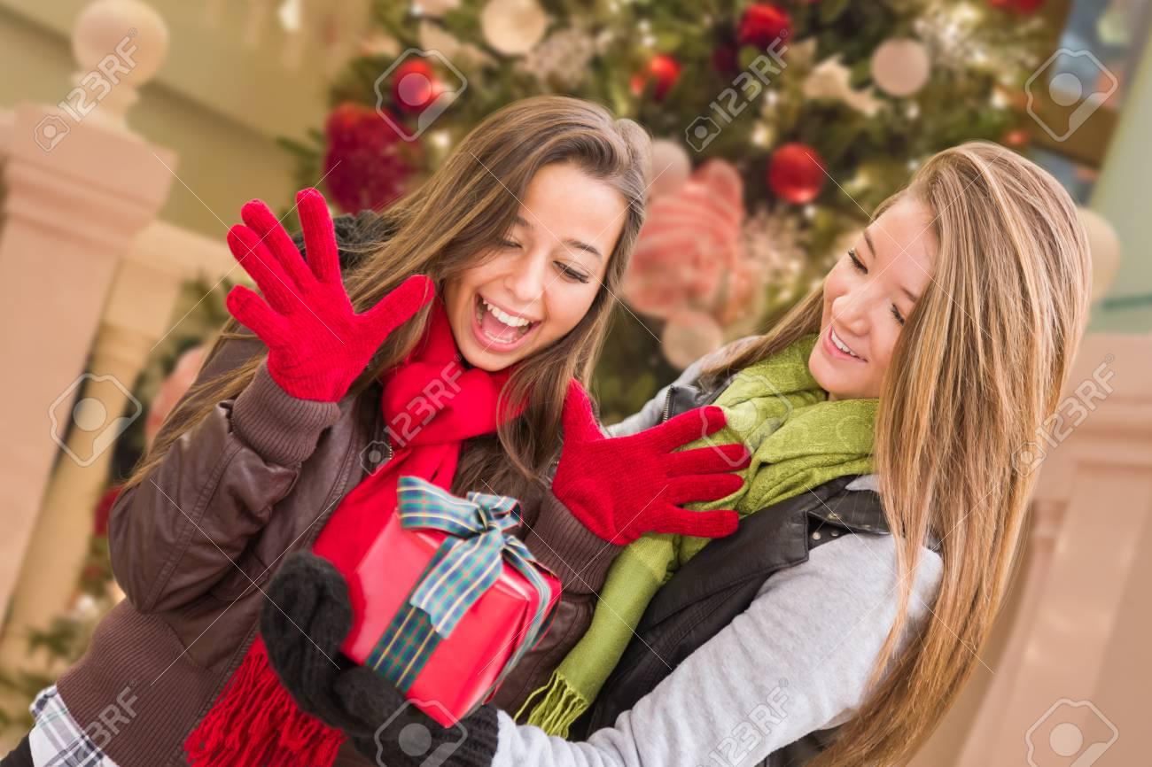 Race Mixte Jeune Femelle Adulte échange Un Cadeau De Noël En Face