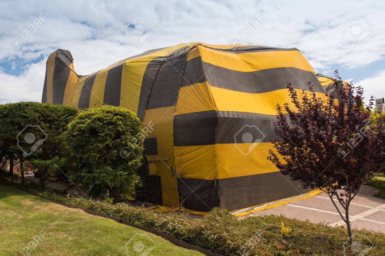 Brown and yellow striped tent covers a house for fumigation process Banque du0027images - & Brown And Yellow Striped Tent Covers A House For Fumigation ...