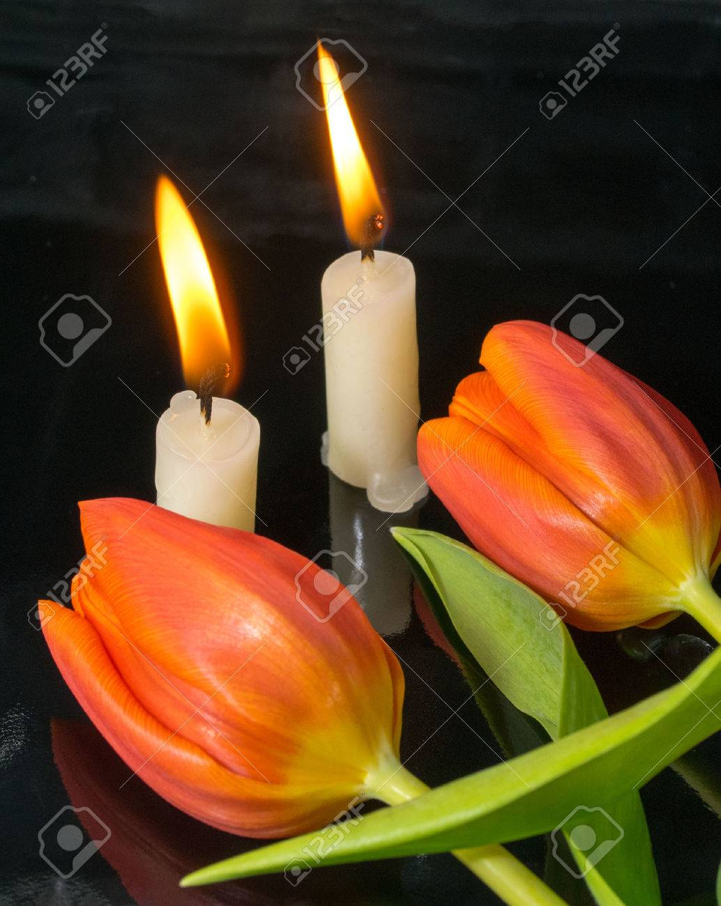 candles with tulips as metaphor and funeral decoration Stock Photo - 25782489