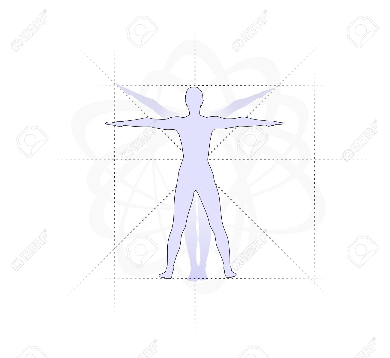 Study Of The Human Body With Proportions Stock Photo Picture And