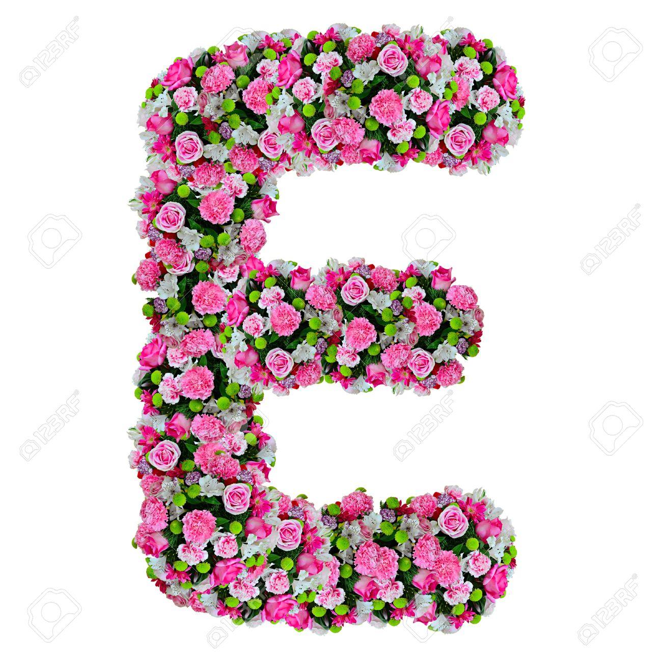 E flower alphabet isolated on white with clipping path stock photo e flower alphabet isolated on white with clipping path stock photo 11854419 thecheapjerseys Choice Image