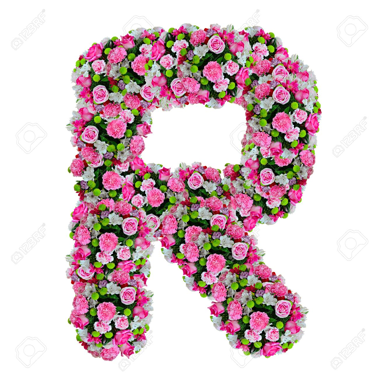 R, Flower Alphabet Isolated On White With Clipping Path Stock Photo    11854446