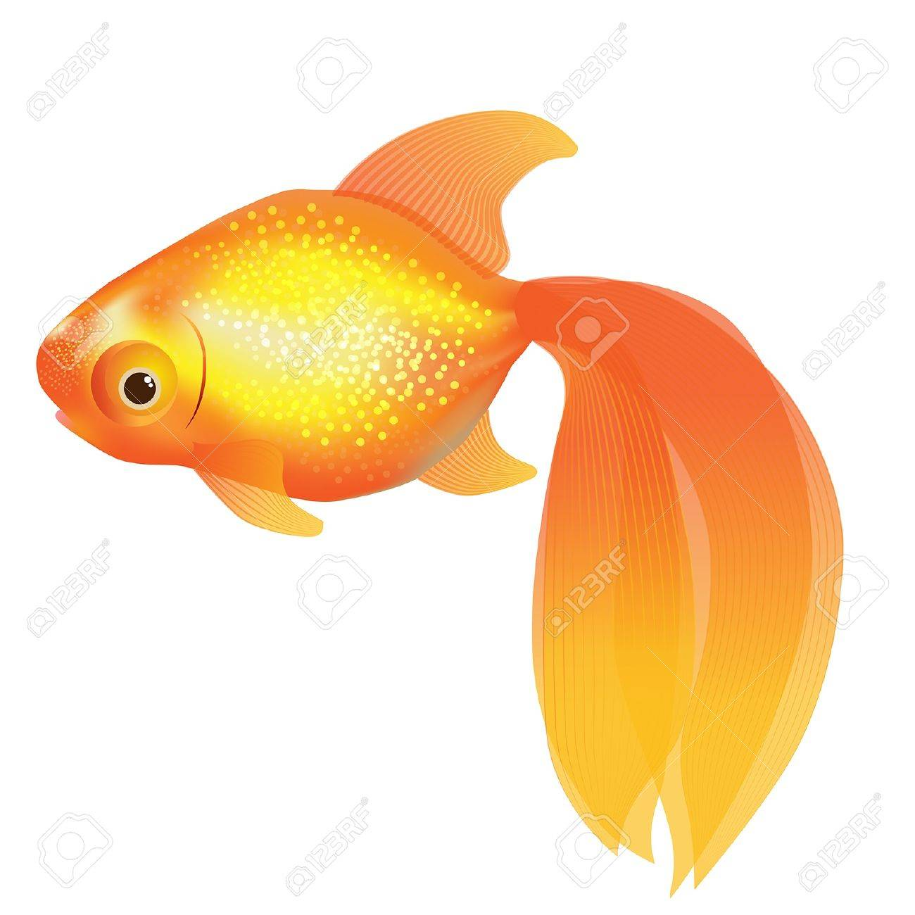 illustration of shiny goldfish Stock Vector - 16724512