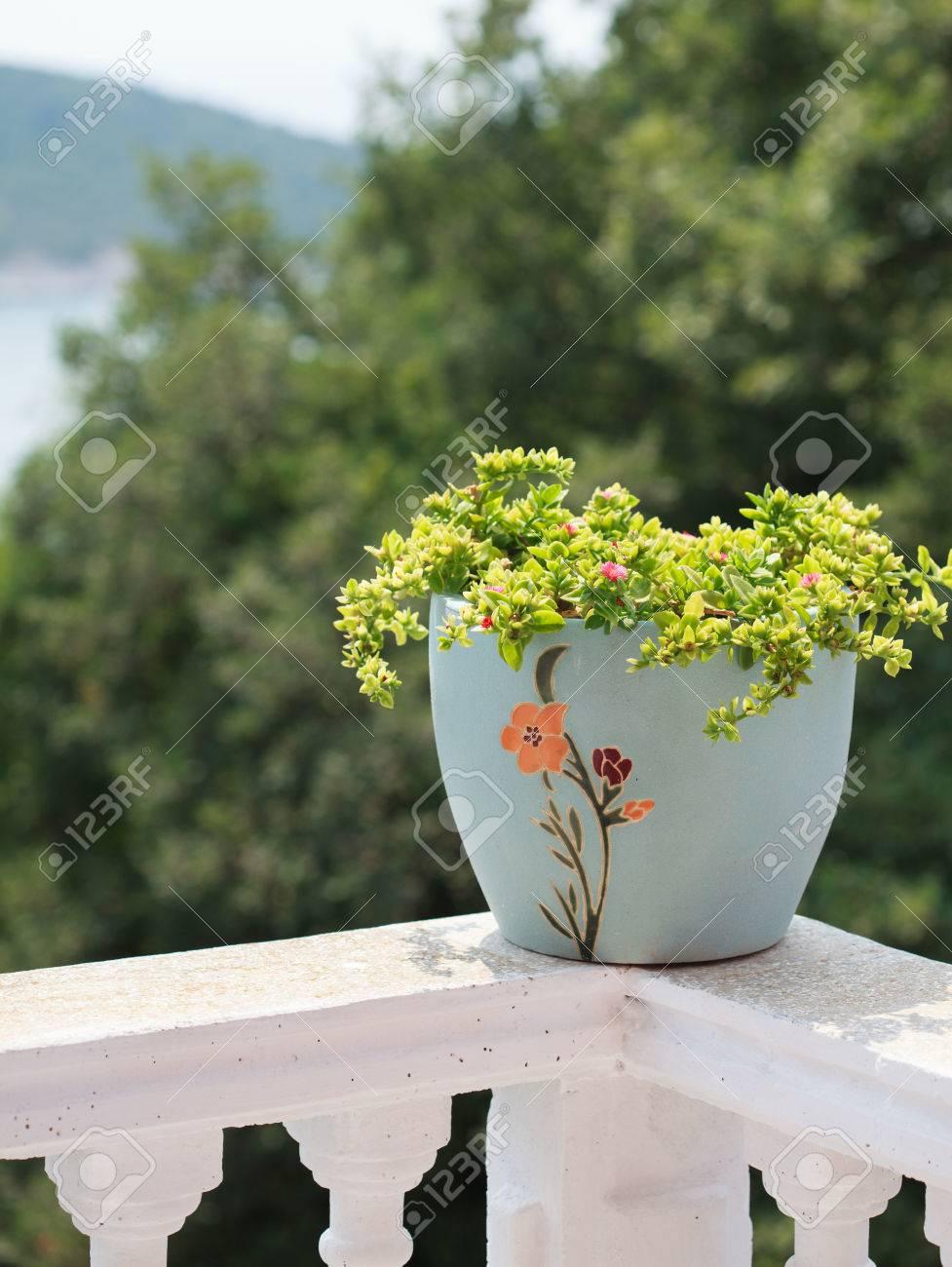 Einen Topf Mit Blumen Auf Dem Balkongelander Mit Einer Schonen