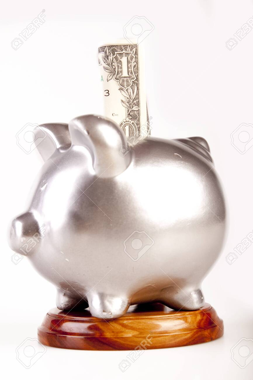pig and money Stock Photo - 7200959