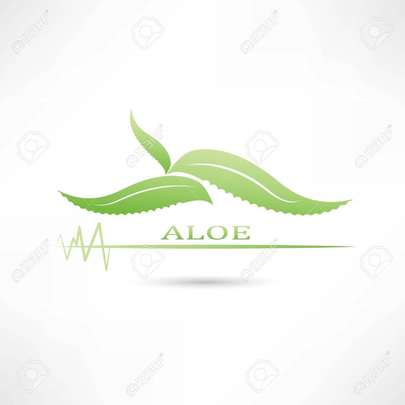 aloe green icon Standard-Bild - 24743398