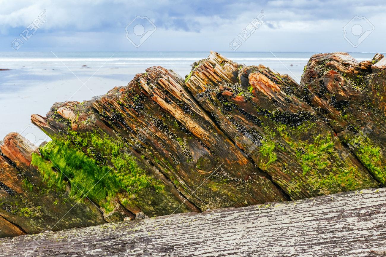 Amazon Shipwreck in Inverloch Australia - 168379554