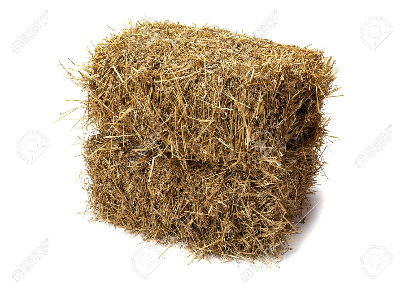 studio shot of hay isolated on white stock photo picture and
