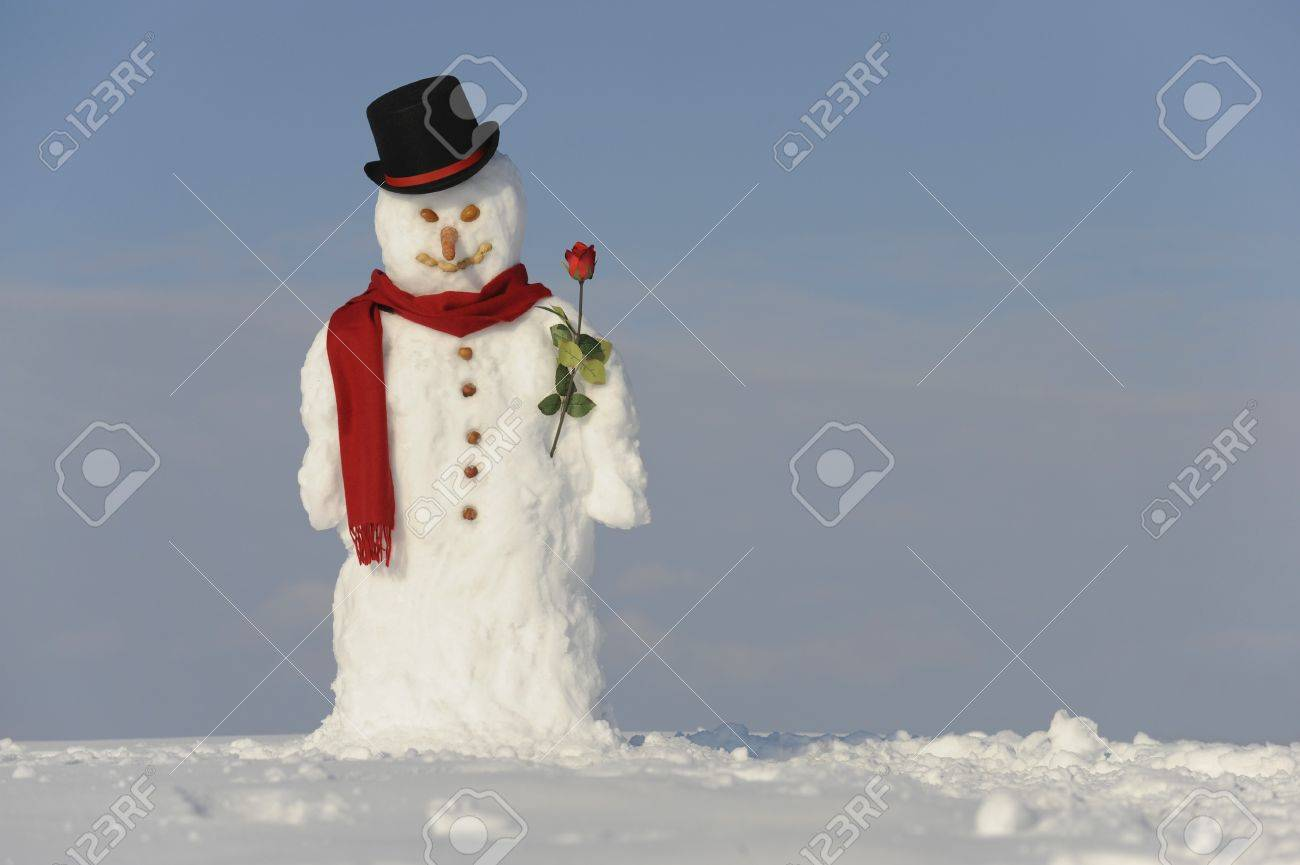 snowman with hat and shawl Stock Photo - 8020852