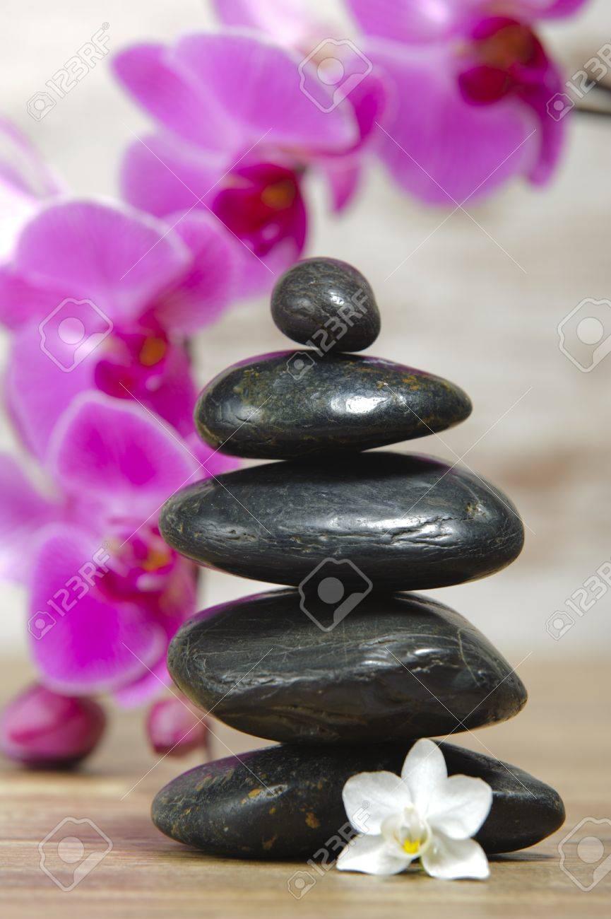 Banque dimages , Jardin zen japonais avec pierres empilées et fleur dorchidée
