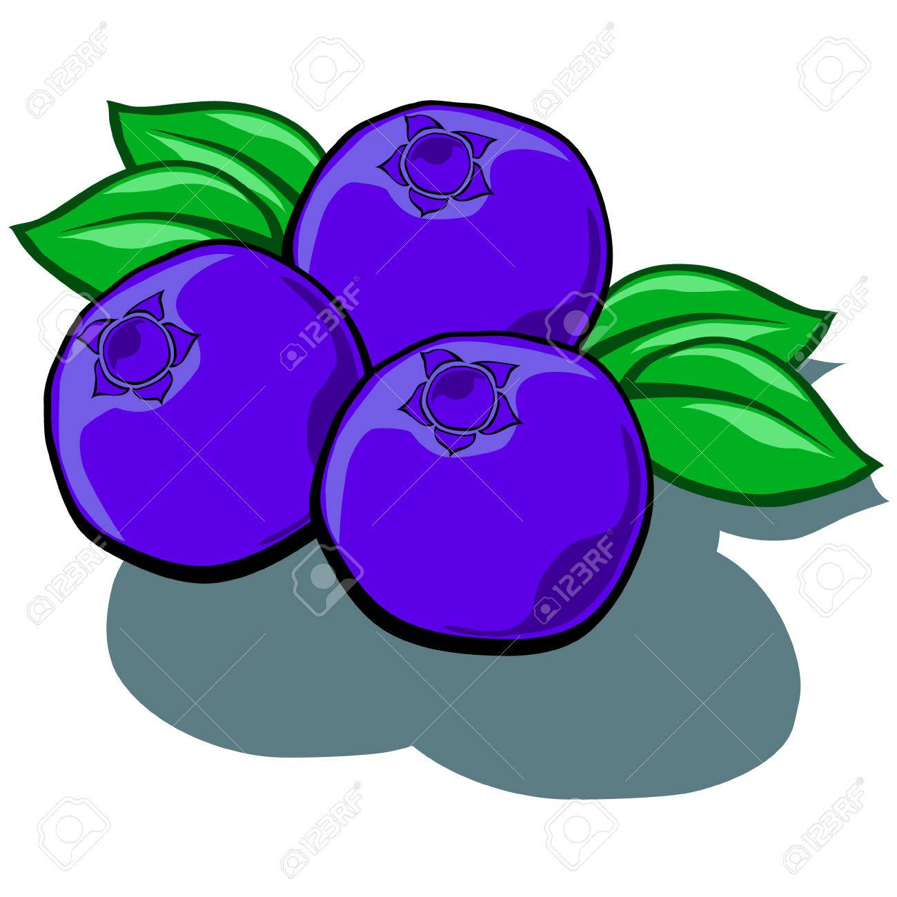Images Of Cartoon Blueberries