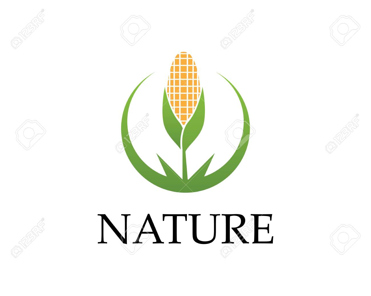 corn nature industry logo vector illustration royalty free cliparts vectors and stock illustration image 112119158 corn nature industry logo vector illustration
