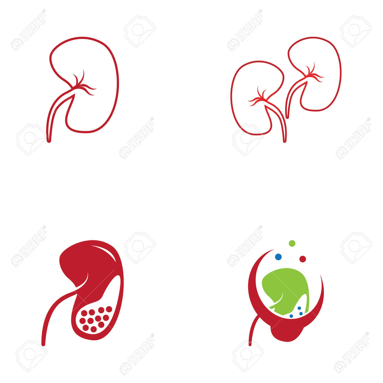 Kidney care icon and symbol vector illustration - 169760386