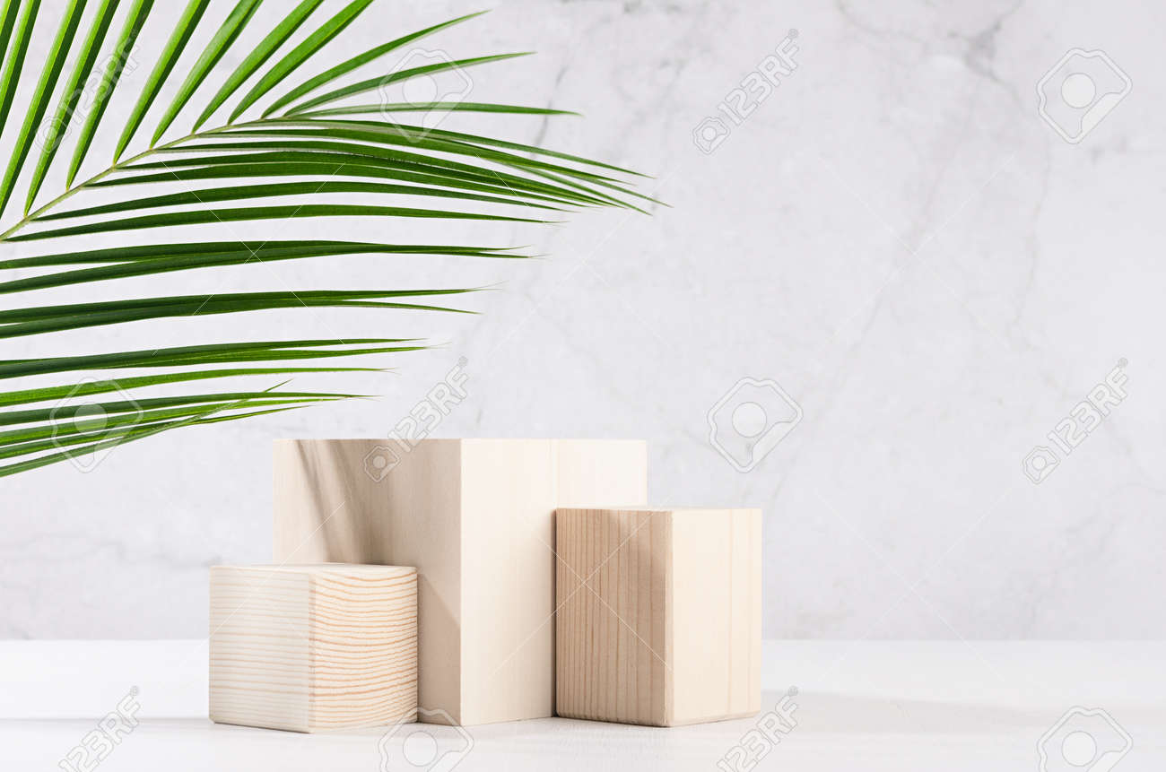 Summer modern showcase with set wooden podiums with green palm leaf in sunlight, shadow on white board, gray marble wall for cosmetics product display. - 168468846