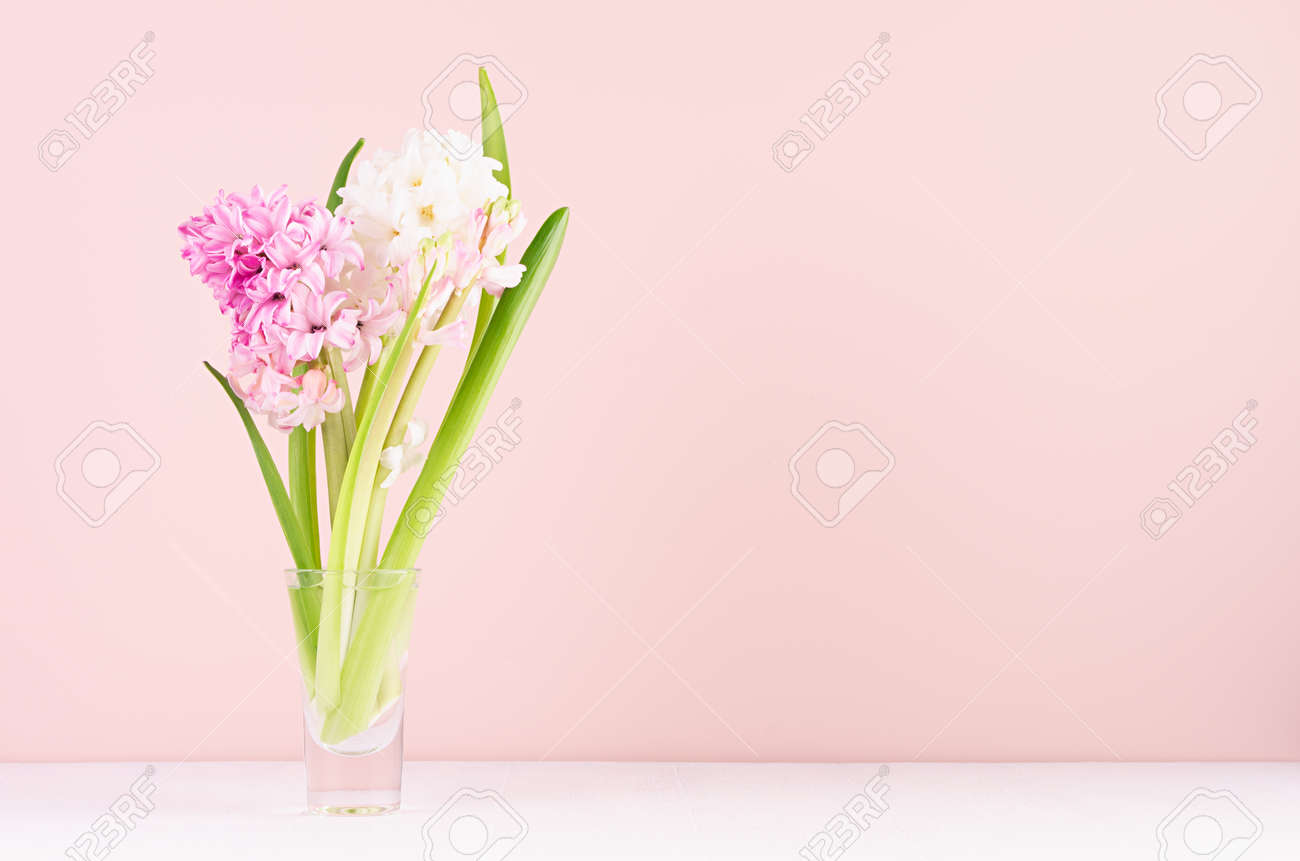Gentle romantic spring flowers hyacinth in glass vase on white wood table and pink wall, copy space. - 168468848