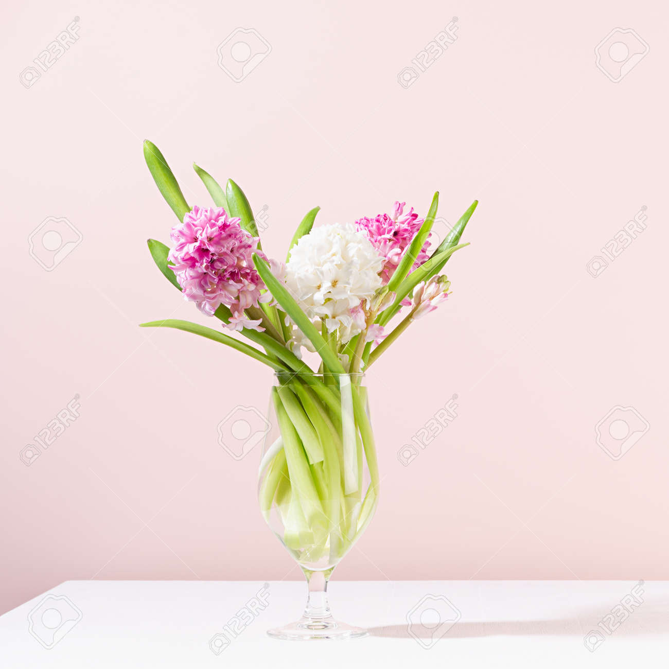 Fresh delicate spring home interior with pink hyacinth bouquet in vase on white wooden table, square. - 168468849
