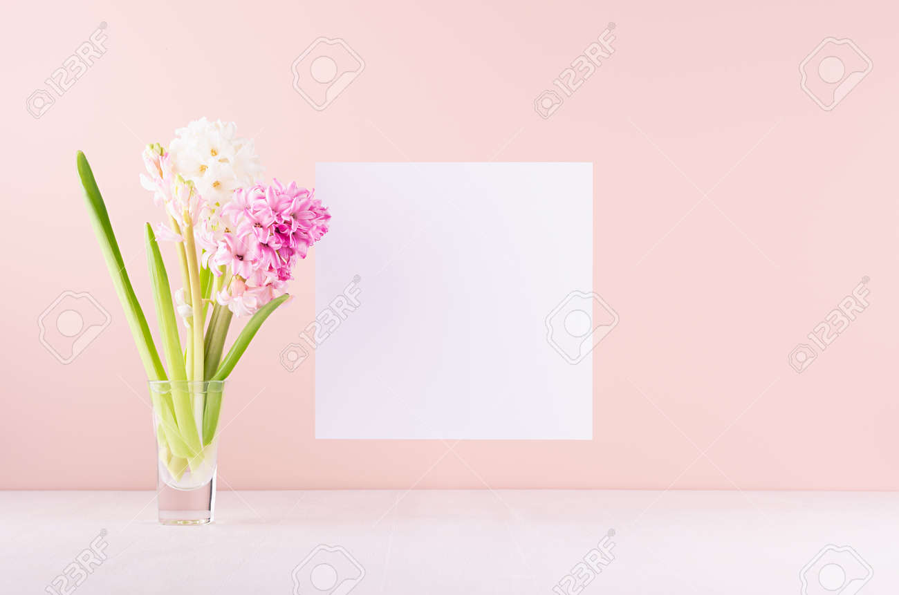 Soft light exquisite pink hyacinth flowers in glass vase with white blank paper for text on white wood table, romantic springtime background. - 168468853