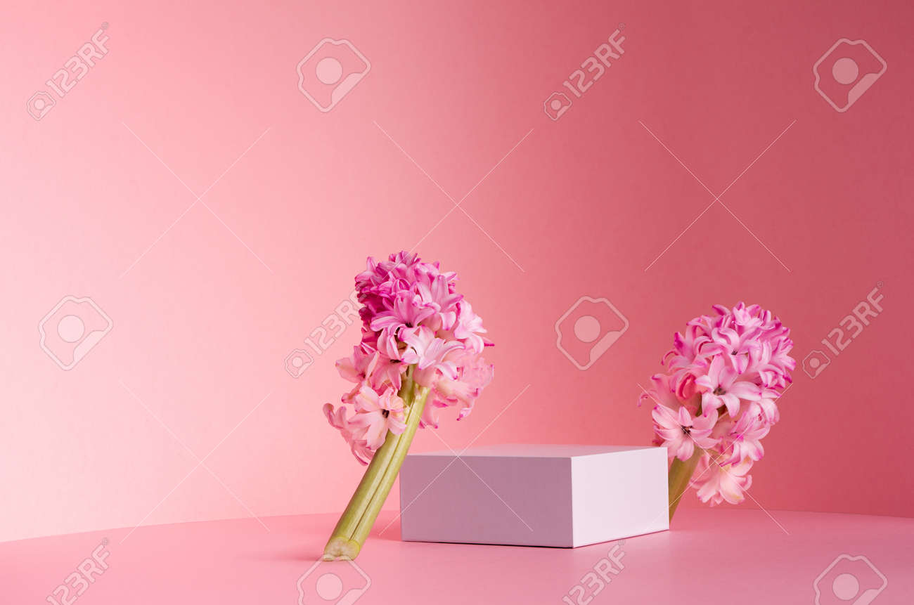 Delicate spring mock up for cosmetic and product display with white square podium, tender hyacinth flowers standing on pastel pink background. - 168468857