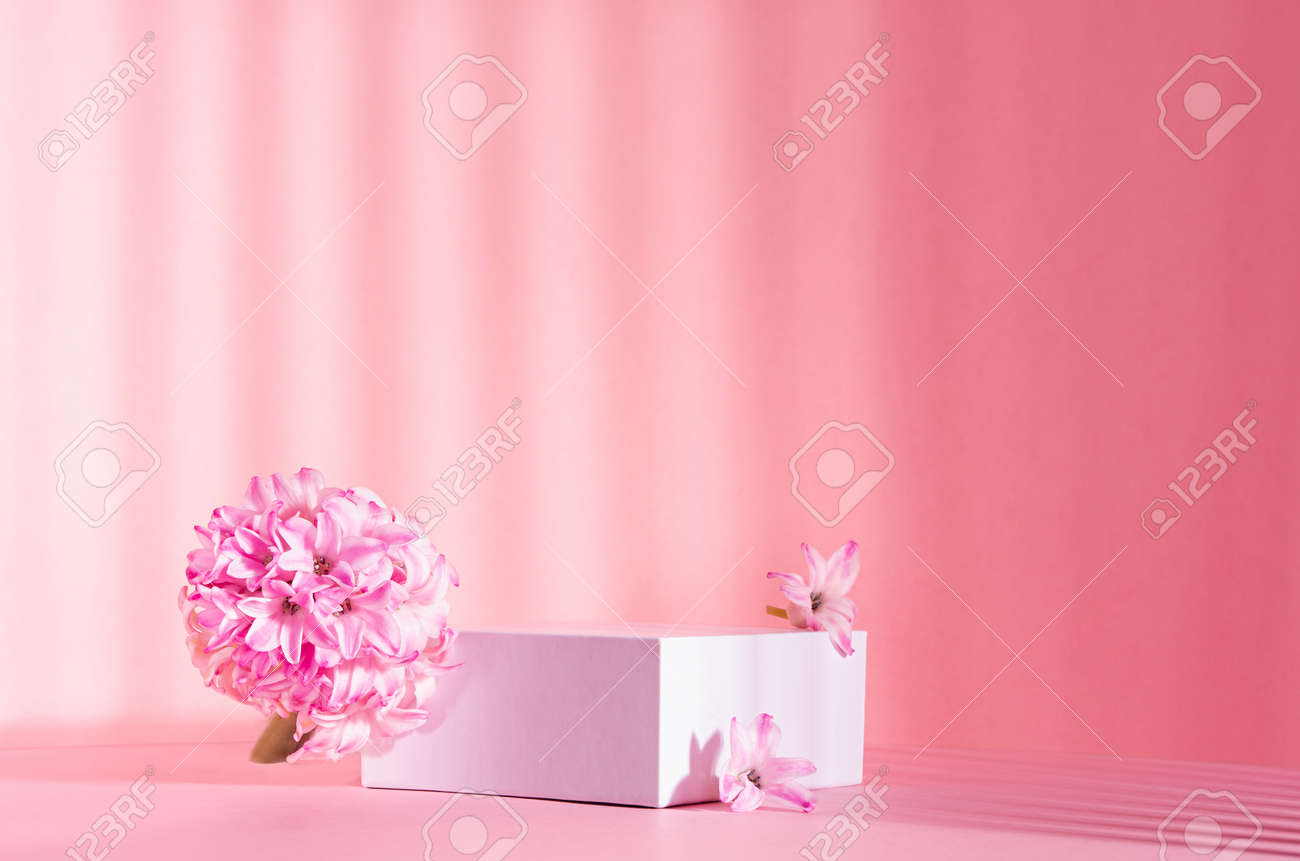 Elegant spring showcase with white square podium for display cosmetic and goods in sunlight, striped shadows with tender hyacinth flowers on pink background, copy space. - 168468870