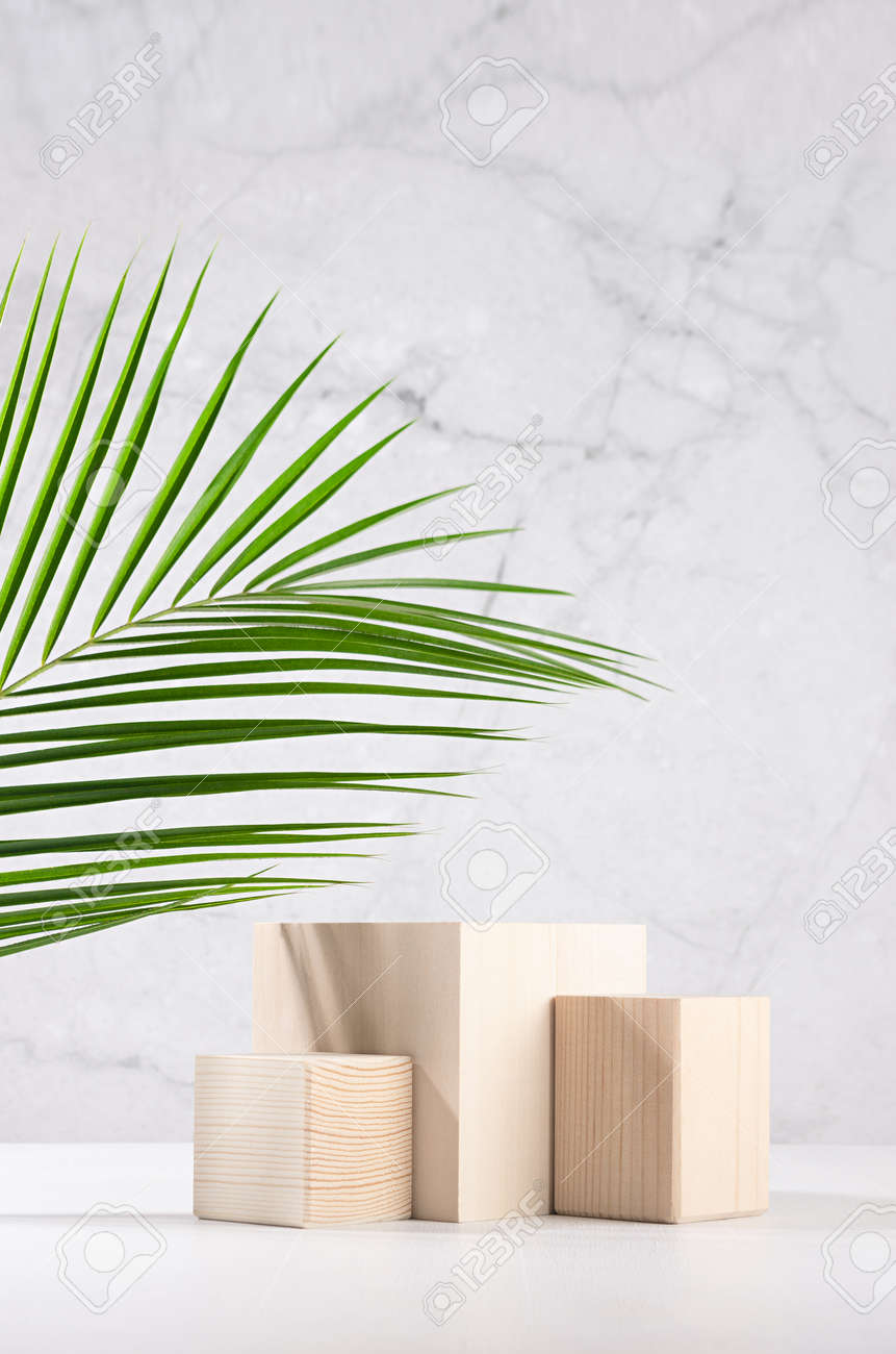 Summer style of showcase for cosmetics product display - wooden cube platforms with green palm leaf in sunlight on white wood board, gray plaster wall, vertical. - 168468899