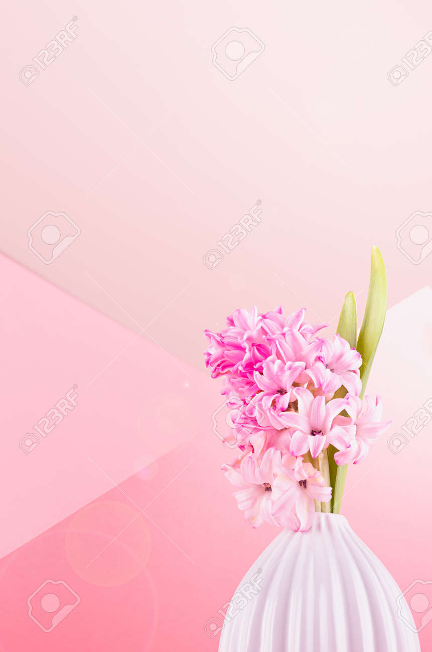Fresh delicate spring background with hyacinth flower for easter in white vase with sunbeam, sun flare on pastel pink background, copy space, closeup. - 168468906