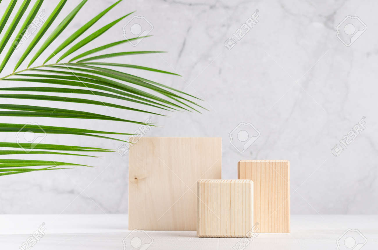 Set of natural wood square podiums with green palm leaf in white and gray marble interior with sunlight and shadow. Showcase for cosmetic products, goods, shoes, bags, watches. - 168468907