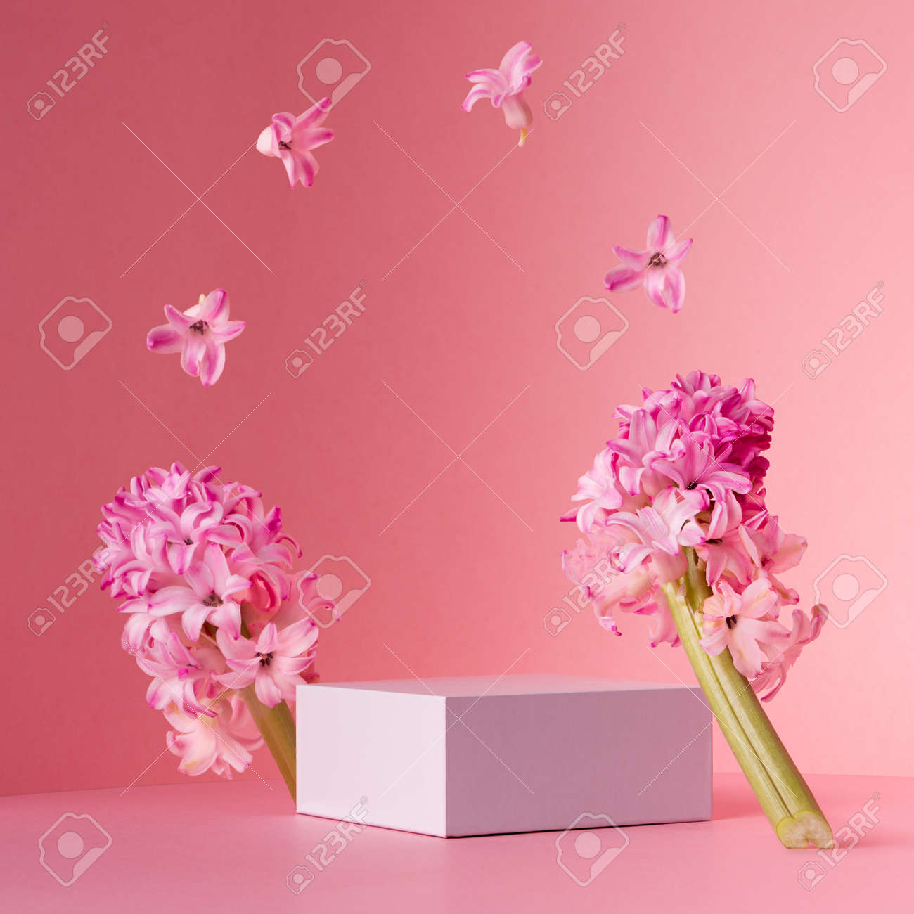 Delicate spring mock up for cosmetic and product display with white square podium, tender hyacinth flowers flying as frame on pastel pink background. - 168468923