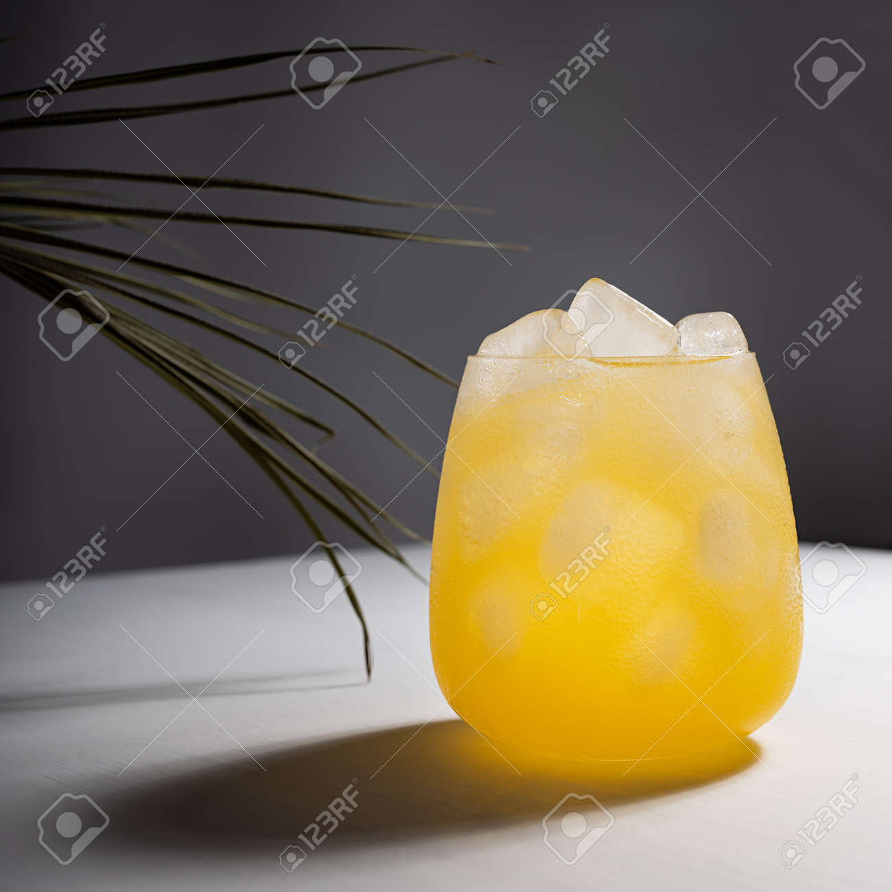 Cold fresh summer orange cocktail with vodka, ice cubes shining in sunlight with shadows, green palm leaf on white table with dark gray wall, square. - 173913657
