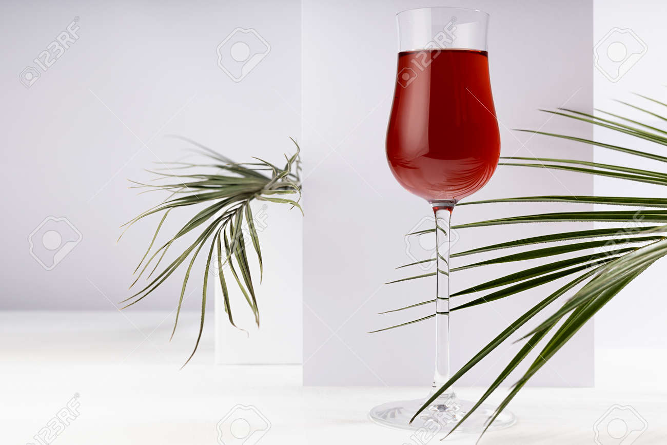 Red porto wine in luxury high glass with green palm leaf in hard light with shadow in soft light white abstract interior with geometric surfaces in minimal style. - 173913945