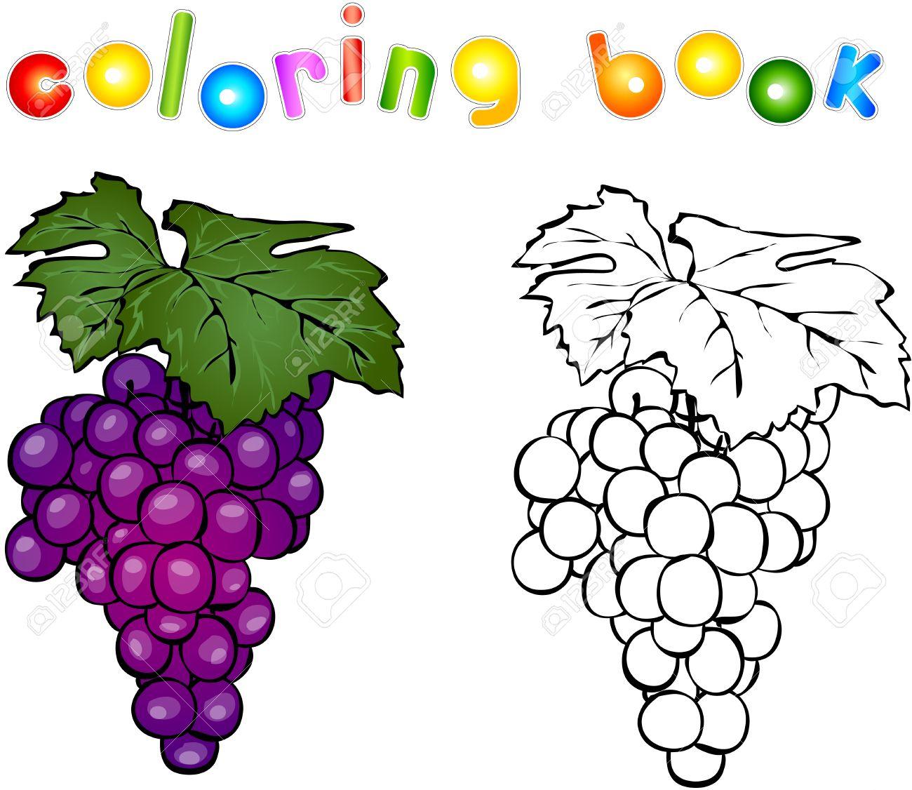 Uva De Dibujos Animados De Libro Para Colorear Ilustración Para Los Niños