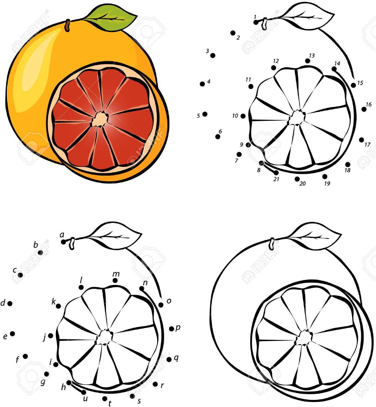Dibujos Animados De Naranja Ilustración Del Vector Colorear Y