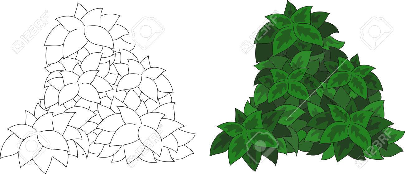 Arbusto Con Hojas De Dibujos Animados. Libro De Colorante Para Los ...