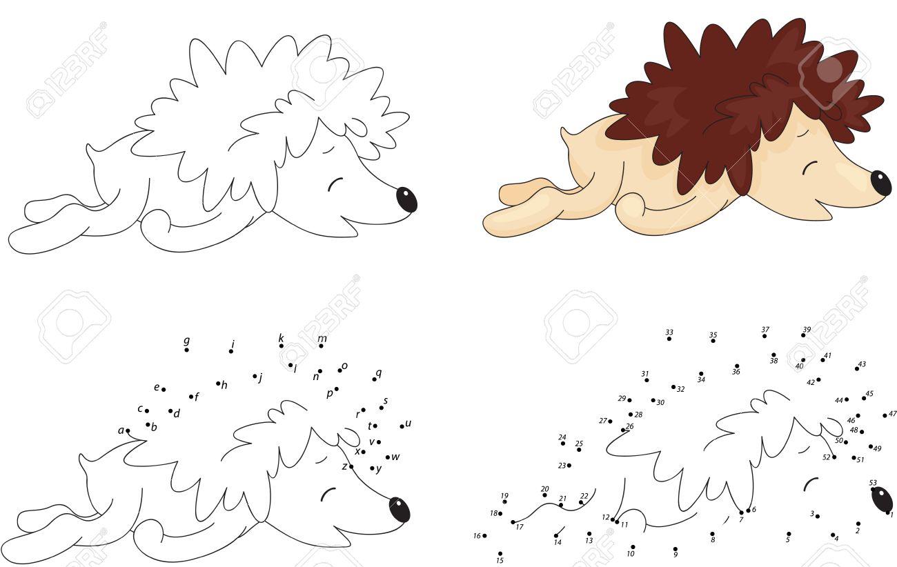 de dibujos animados para dormir erizo libro para colorear y punto a punto juego educativo
