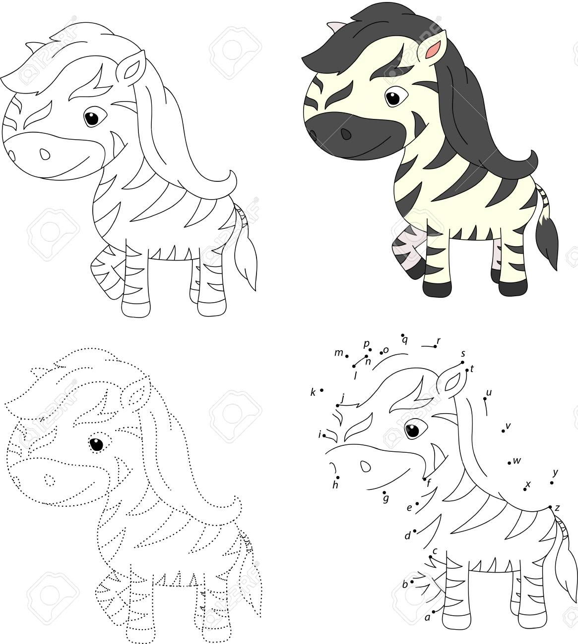 Cartoon Zebra. Coloring Book And Dot To Dot Educational Game ...