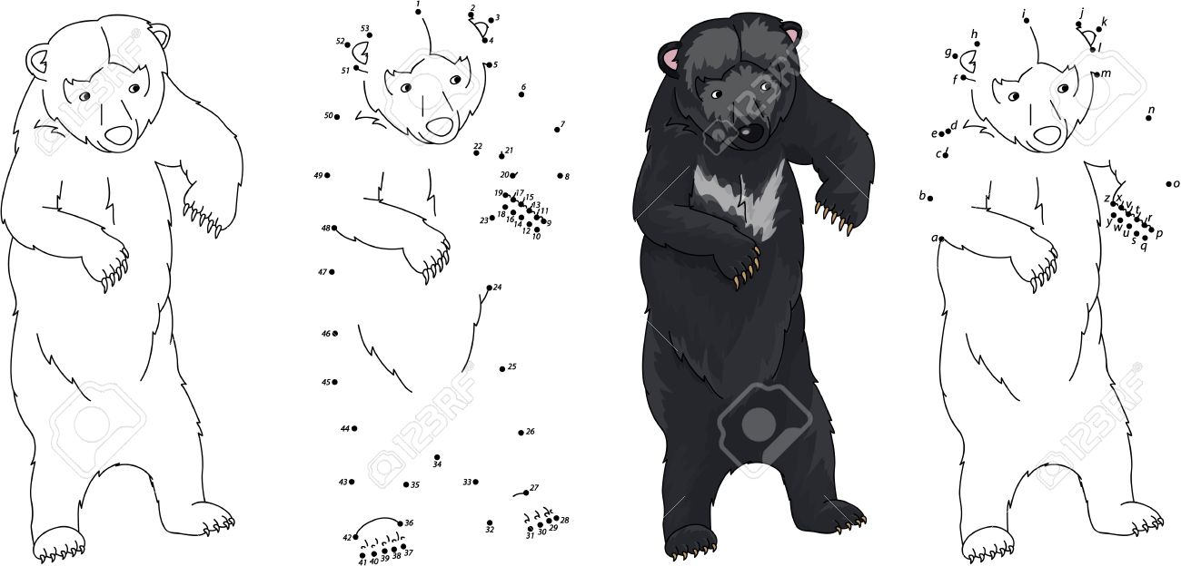 Asiática De Dibujos Animados Oso Negro. Libro Para Colorear Y Punto ...