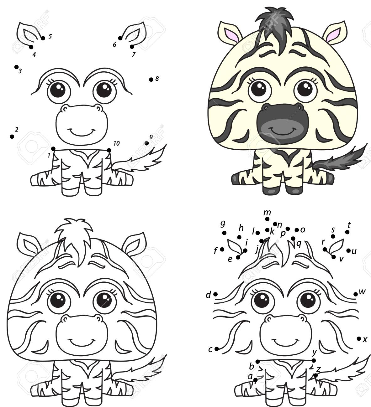 Cartoon zebra. Coloring book and dot to dot educational game..