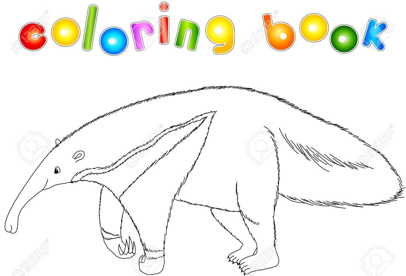 Divertidos Dibujos Animados Oso Hormiguero Aislado En Blanco Libro De Colorear Para Niños