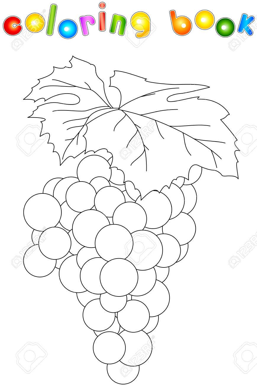 cartoon grapes coloring book for kids royalty free cliparts vectors