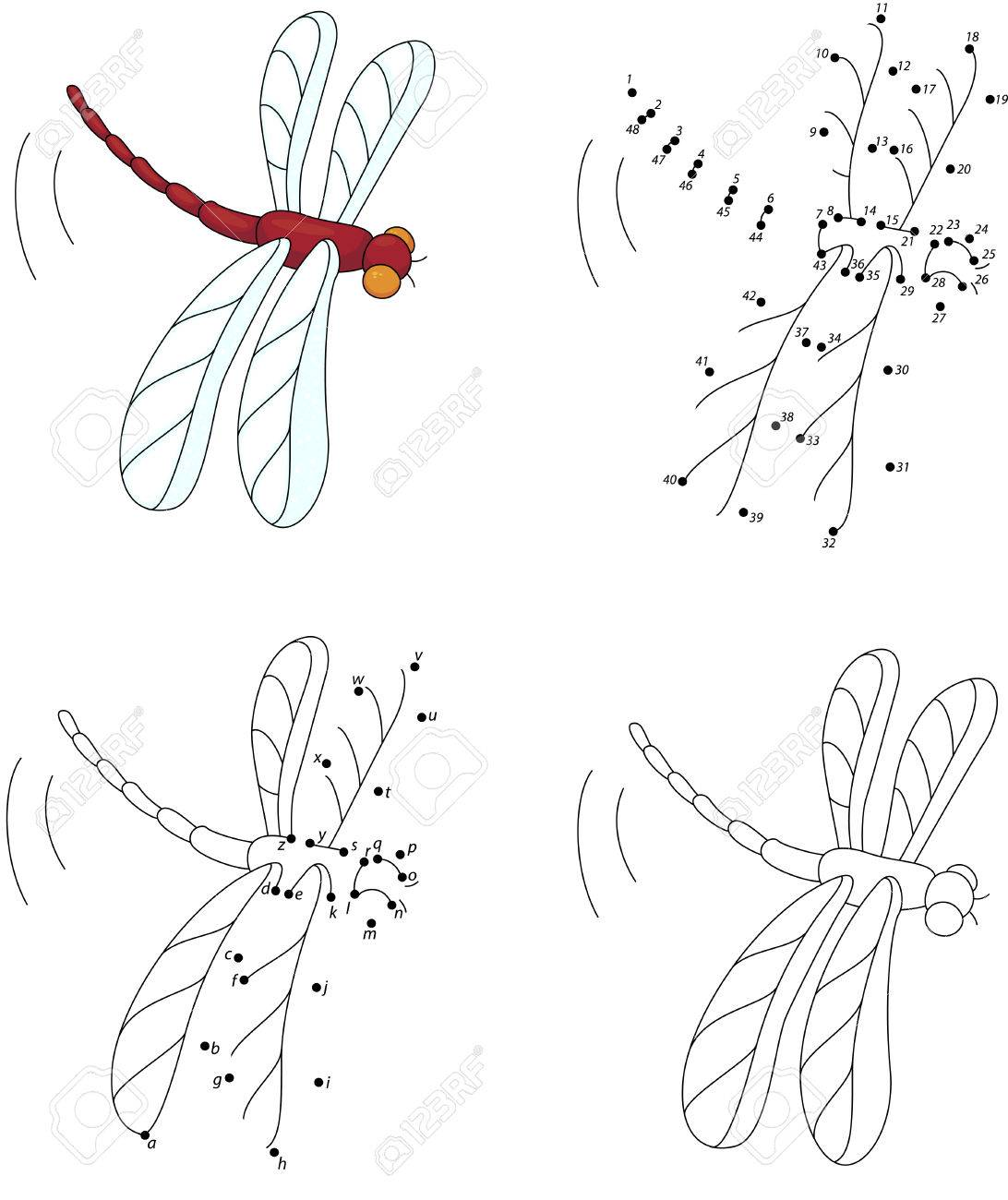 Cartoon Red Dragonfly Coloring Book And Dot To Dot Educational