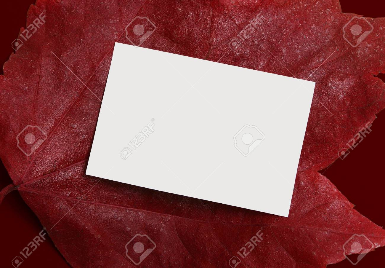Empty ad or message space with a rich autumn background Stock Photo - 2123515