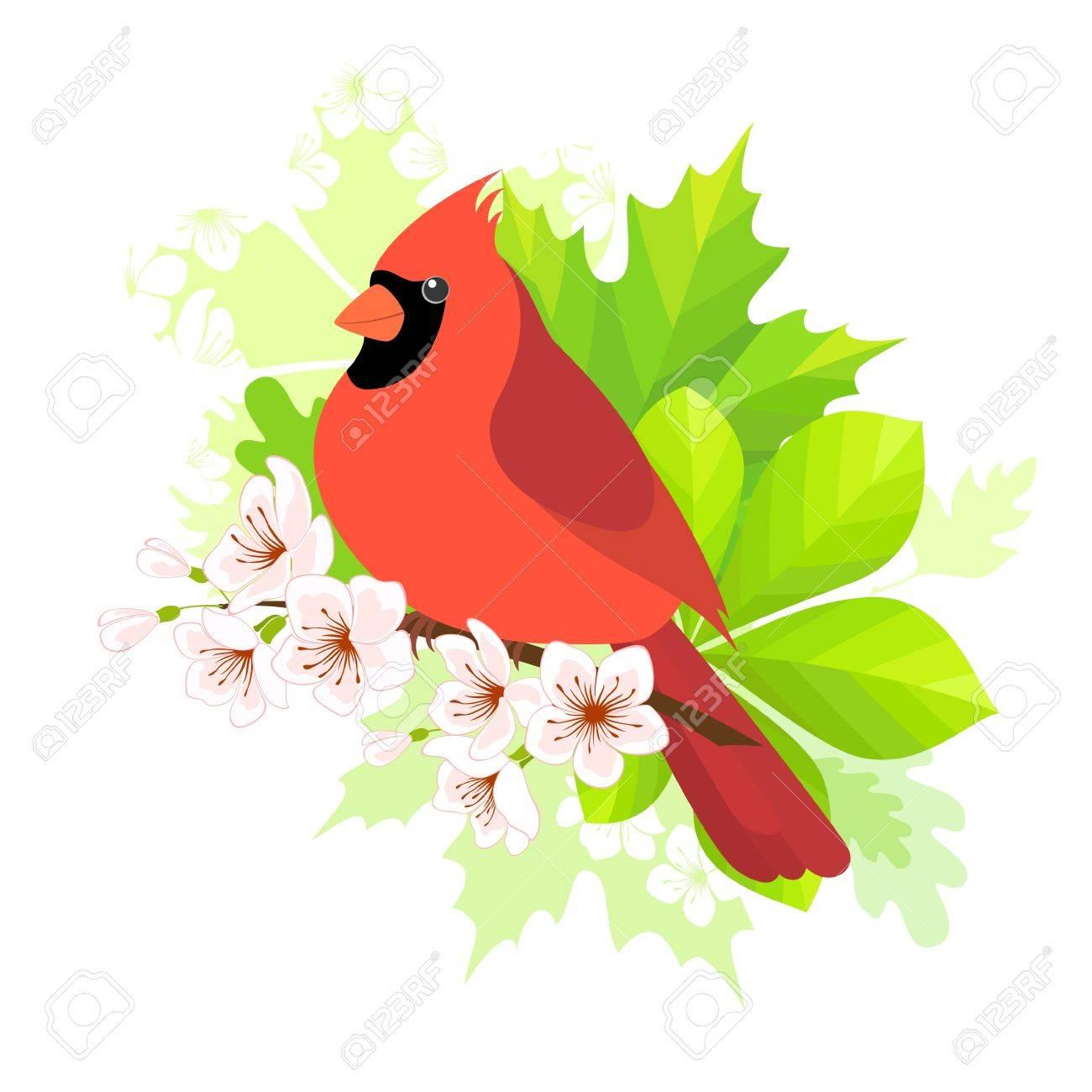 Pájaro Cardenal Sentado En Flor De Primavera Concepto De Rama De ...