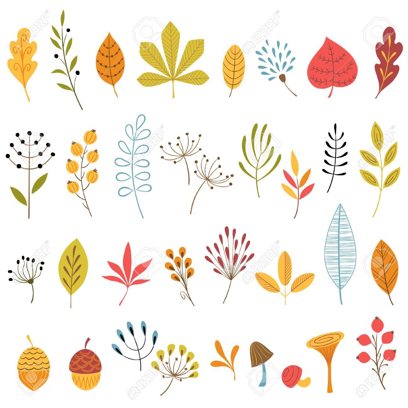Set of hand drawn autumn floral design elements. - 23288595