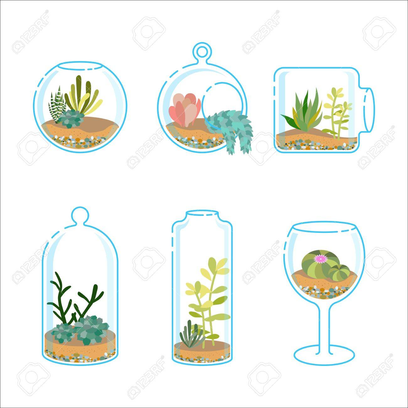 Decoration Avec Plantes Grasses ensemble de florariums plat avec différentes plantes grasses et cactus pour  la décoration intérieure moderne. plantez dans un aquarium en verre.