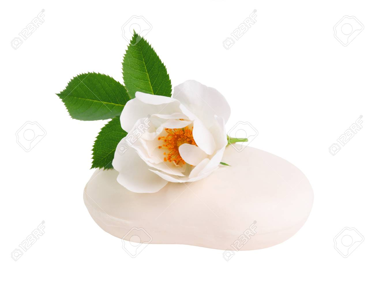 Rose flower on pieces of natural soap isolated on white background Stock Photo - 13826317