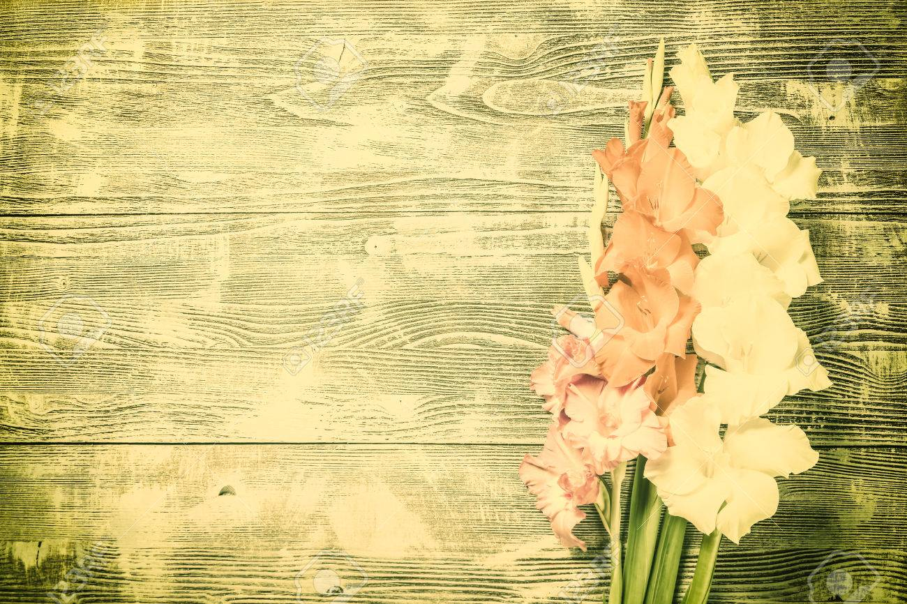 Vintage Nature Background With Beautiful Flowers Floral Border Stock Photo Picture And Royalty Free Image Image 53238586