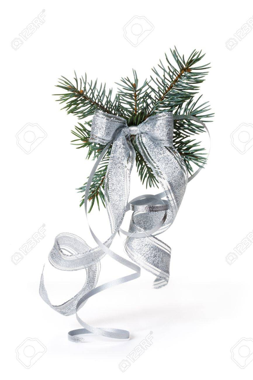 Blue Spruce Branch with Silver Bow Stock Photo - 10103875